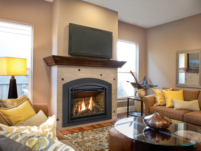 Chaska 34 Gas Fireplace Insert Gas Fireplaces Inserts
