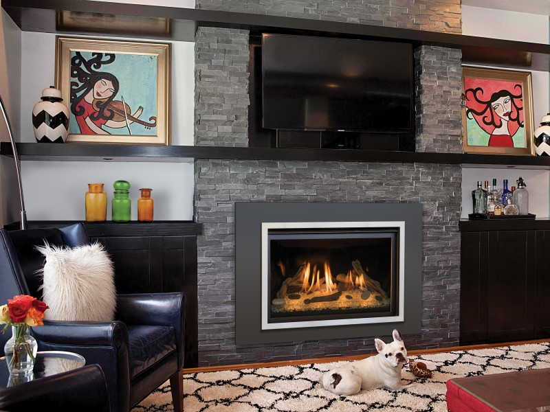 Chaska 34 Gas Fireplace Insert | Gas Fireplaces Inserts ...