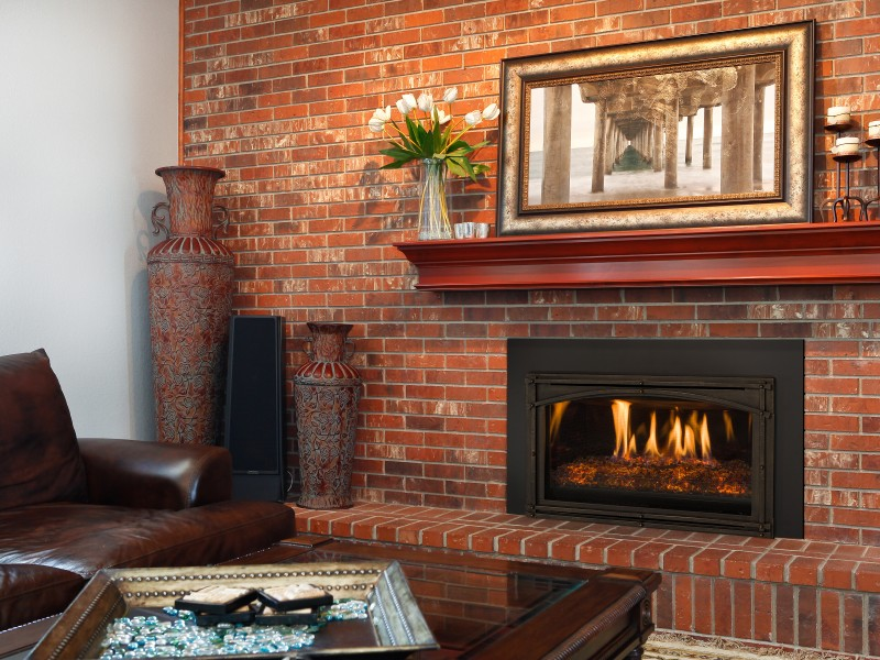 Chaska 29 Gas Fireplace Insert Gas Fireplaces
