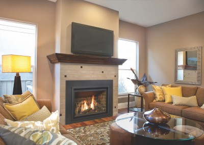 Modern & Contemporary Gas Fireplace Inserts | Gas Fireplaces ...